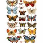 Glansbilleder, 16,5x23,5 cm, sommerfugle, 3 ark
