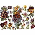 Glansbilleder, 16,5x23,5 cm, blomster, 3 ark