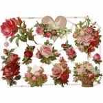 Glansbilleder, 16,5x23,5 cm, roser, 3 ark