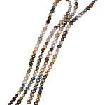 Ferskvandsperler Dot, 5-6 mm, 40 cm