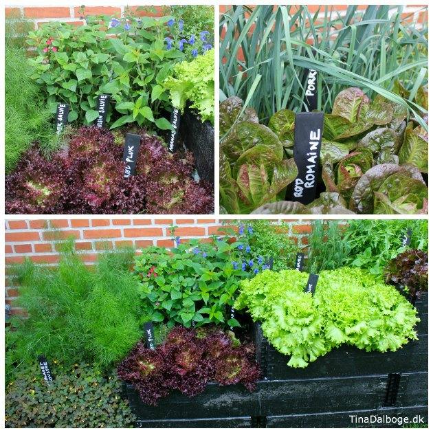 Højbed og DIY planteskilte med tavlelak