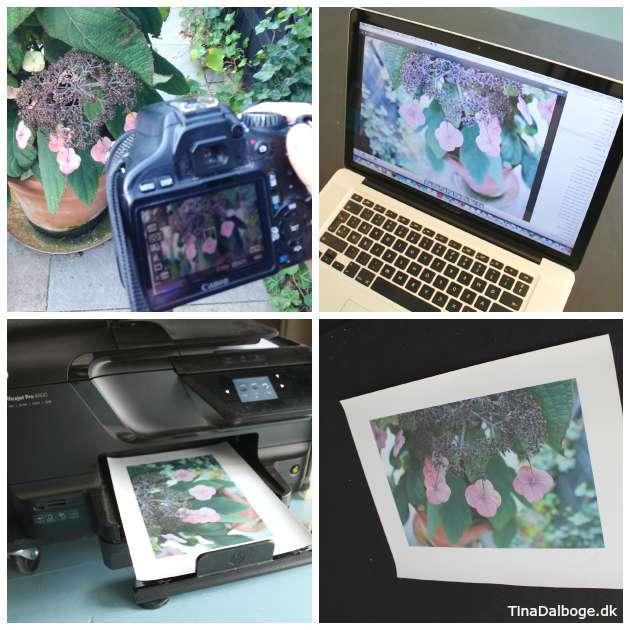 tag et billede og overfør det til print på træ med transferpapir