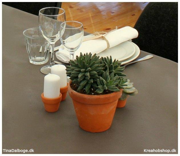 inspiration til fester bordpynt og opdækning med planter og sukkulenter i terracottapotter