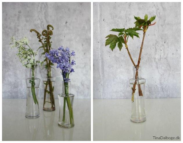 blomster i maj måned til bordpynt
